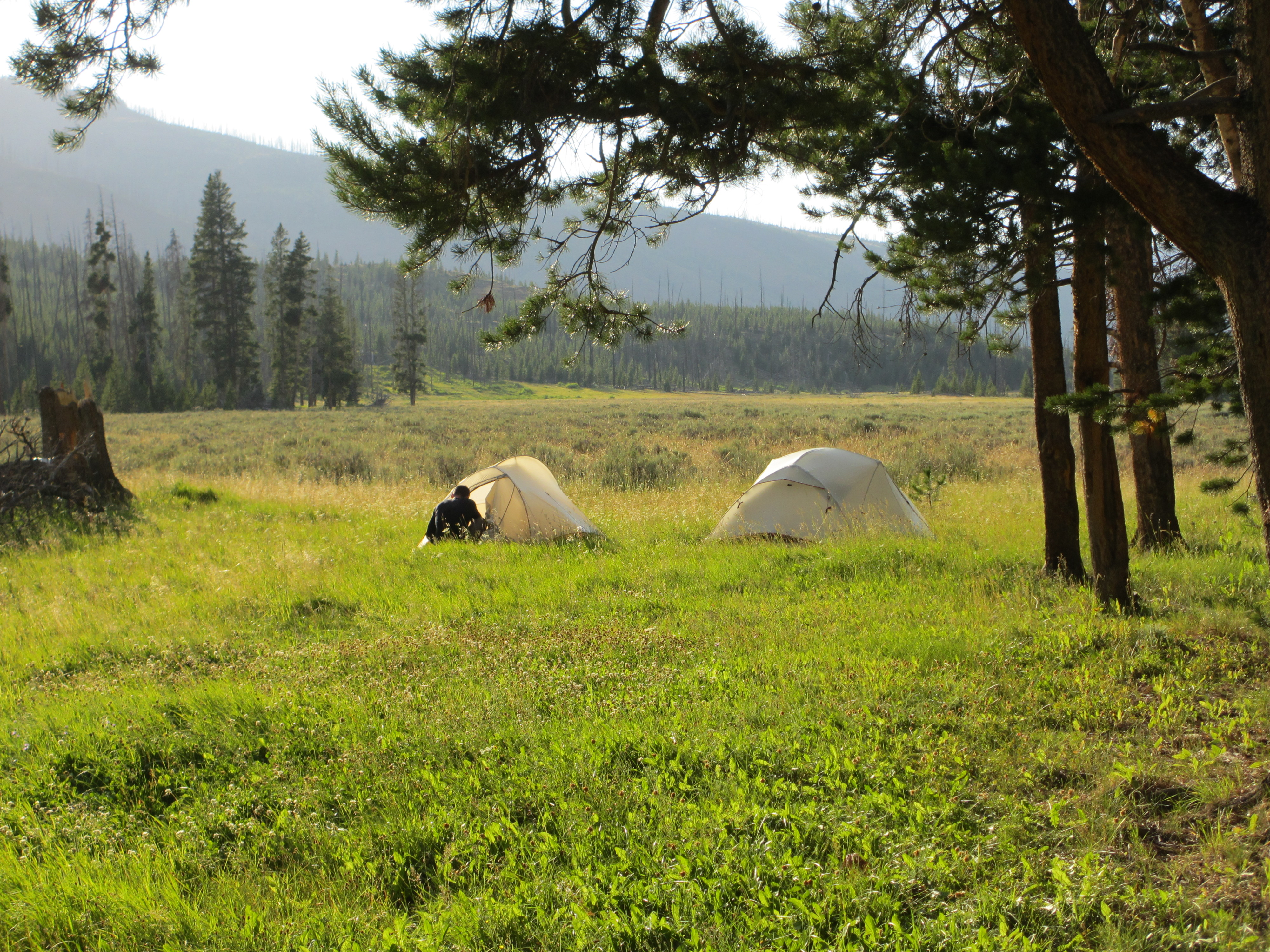 Backpacking Yellowstone, Campsite night 2 in upper Lamar River Valley, Big Agnes Tents