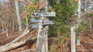 Signs for Bell Mountain Loop Trail and Ozark Trail, Backpacking Bell Mountain Wilderness, Missouri