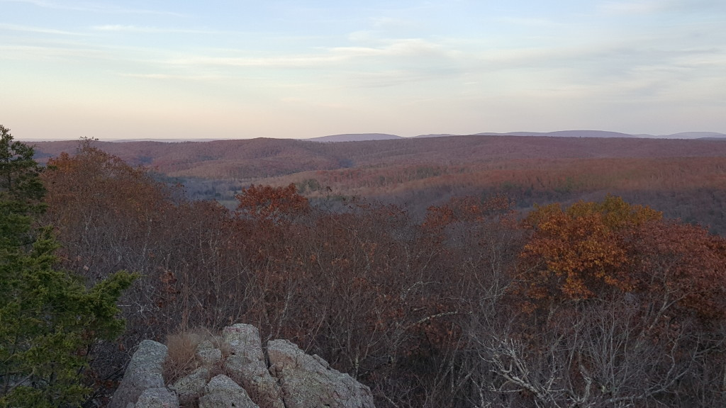 Eastern view from the top of Bell Mountain, Bell Mountain Wilderness, Mark Twain National Forest, Missouri