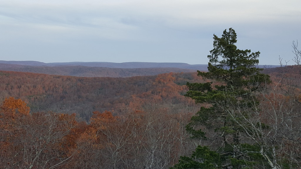View from Bell Mountain, Bell Mountain Wilderness, Mark Twain National Forest, Missouri