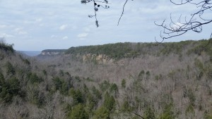 View from South Rim Trail, Savage Gulf State Natural Area, Backpacking South Cumberland State Park, Tennessee